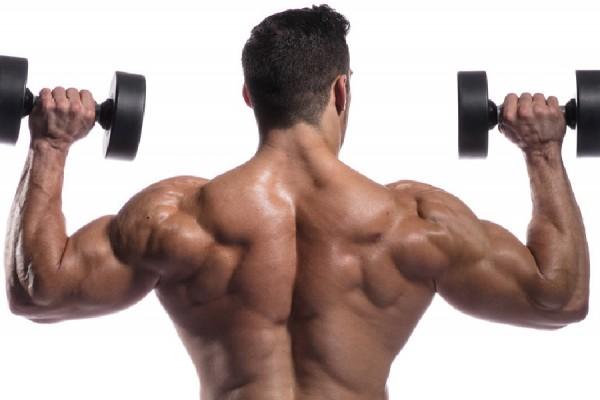 아무리 운동해도 어깨가 좁은 이유는 무엇일까-09.jpg